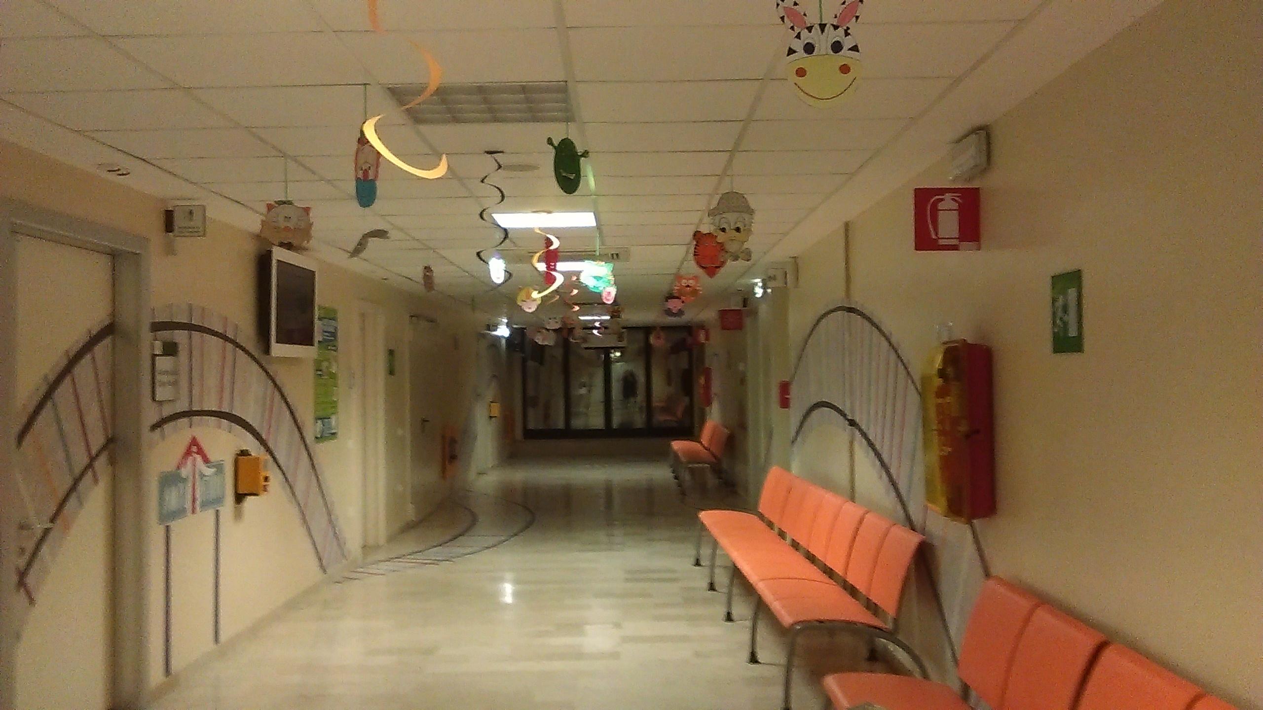 hol-spital-rizzoli